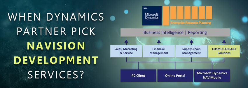 When Dynamics Partner Pick Navision Development Services?